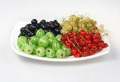 Groselha vermelha de bagas doces e groselha-preta e cassis — Fotografia Stock