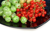 Sweet berries red currant and gooseberries — Stock Photo