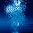 Colorful firework in a night sky — Stock Photo #37331477