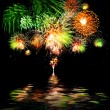Celebratory  firework — Stock Photo