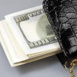 The money dollars in a purse — Stock Photo