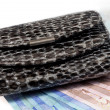 Bundle of euro bank notes and purse — Стоковое фото