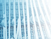 The money American dollars — Stock Photo