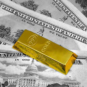 The money and gold bullion — Stock Photo