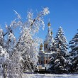Church in the winter park — Stock Photo