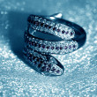 Stock Photo: Ring serpent