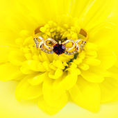Golden ruby ring on yellow flower — Stock Photo