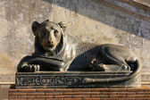 A sculpture lion in Vatican — ストック写真