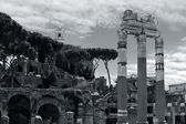 Rome, Italy. Roman forum — Stock Photo