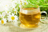 Flowers camomile (ox-eye daisy) and tea — Stock Photo
