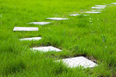 Path from plates on a green grass — Stock Photo