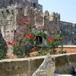 Stock Photo: Historical monument - fortress Saint Peter