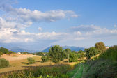 The Italian area Tuscany — Stockfoto