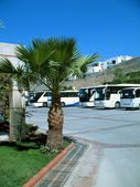 Turkey resort. Coaches — Stock Photo