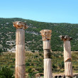 Antiquity greek city - Ephesus. — Foto de stock #38917811