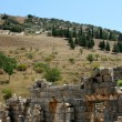 Antiquity greek city - Ephesus. — Foto de stock #38917873
