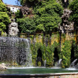 Stock Photo: Italy.Tivoli. Villd Este. Fountain