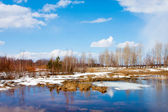 Beautiful nature, spring. River — Stock Photo