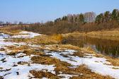Beautiful nature, spring. River — Stock Photo