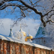 Stock Photo: Kostroma, Ipatievsky monastery