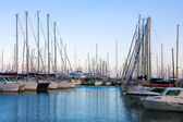 Luxury yachts in Cannes port — Stock Photo