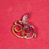 Golden jewelry brooch — Foto Stock