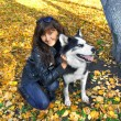 Stock Photo: Dog siberian husky and young woman