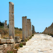 Stock Photo: Road in Antiquity greek city - Ephesus