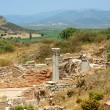 Antiquity greek city- Ephesus — Stock Photo #39844787