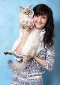 Charmig ung kvinna med Sibirisk katt — Stockfoto