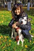Hund siberian husky och ung kvinna — Stockfoto