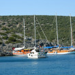 Stock Photo: Yachts in AegeSea