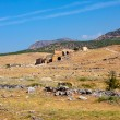 Ruins of Hierapolis — Stock Photo