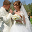 Bride and groom — Photo #40446951
