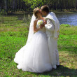 Foto Stock: Bride and groom, kiss