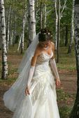 Beautiful bride in birch grove — Stock Photo