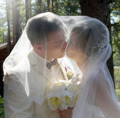 Bride and groom, kiss — Stock Photo