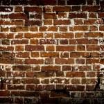 Old wall of brick  — Stock Photo #49186607