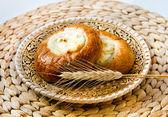 Fresh baked curd tart — Stock Photo