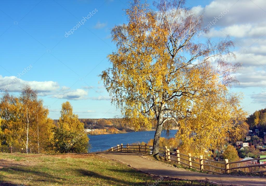Видео Осенняя Природа Скачать
