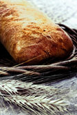Fresh baked bread with wheat — Foto Stock