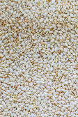 White sesame seeds. — Stock Photo