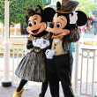 Mickey Mouse and Minnie mouse. — Stock Photo