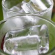 Ice in tumbler — Stock Photo #35883901