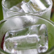 Ice in tumbler — Stock Photo