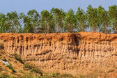 Soil under condition of the erosion. — Stock Photo