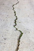 Cement cracked road. — Stock Photo