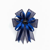 Blue ribbons winner bows. — Stock Photo