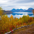 Nature of northern Norway  — Stock Photo