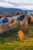 Fall of Norway. Tromso — 图库照片